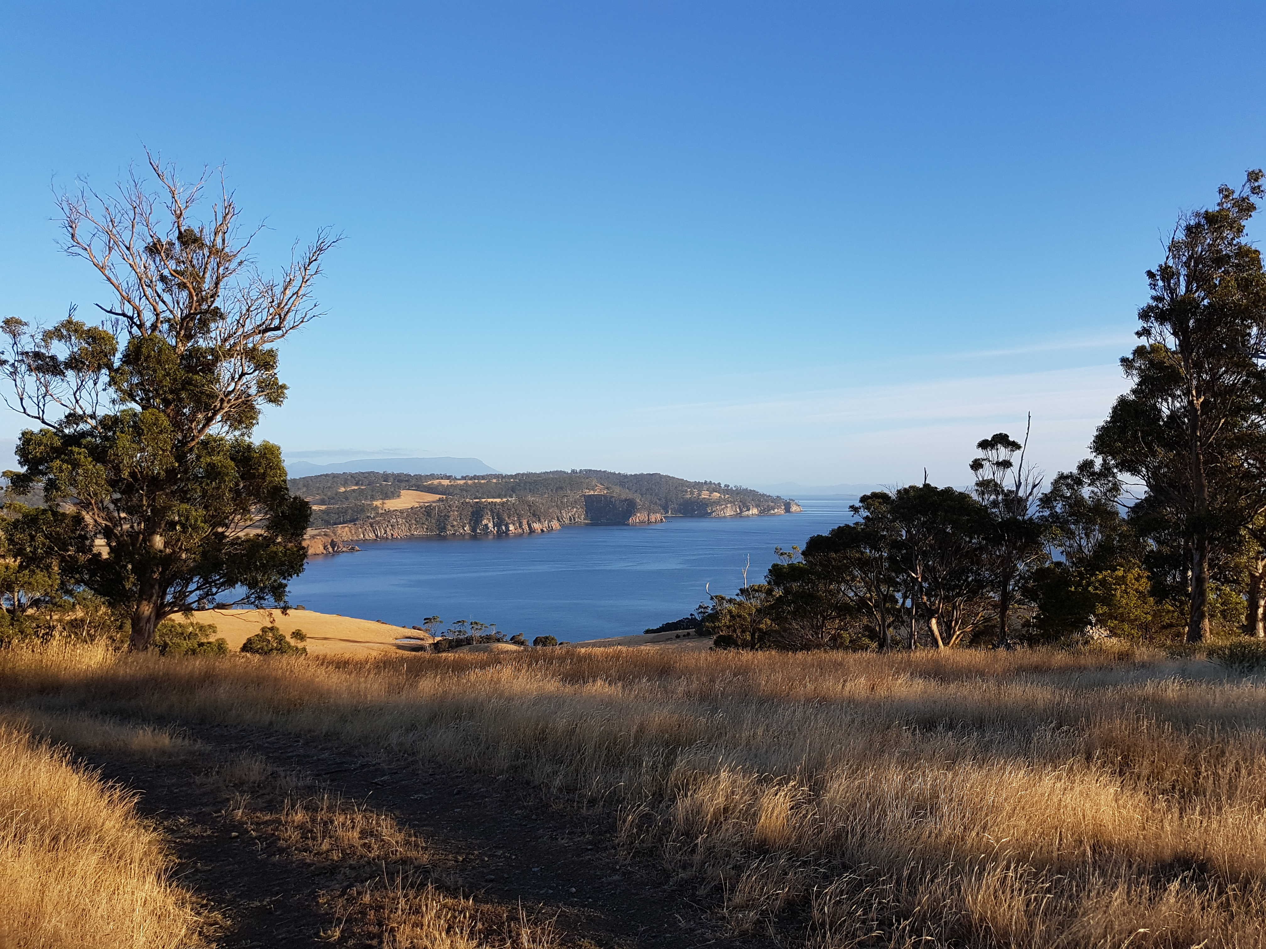Tasmania - how's that for a view?